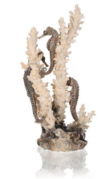 Oase biOrb Seepferdchen Ornament natural M