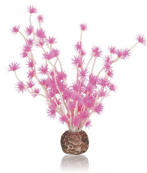 Oase biOrb Bonsaiball pink