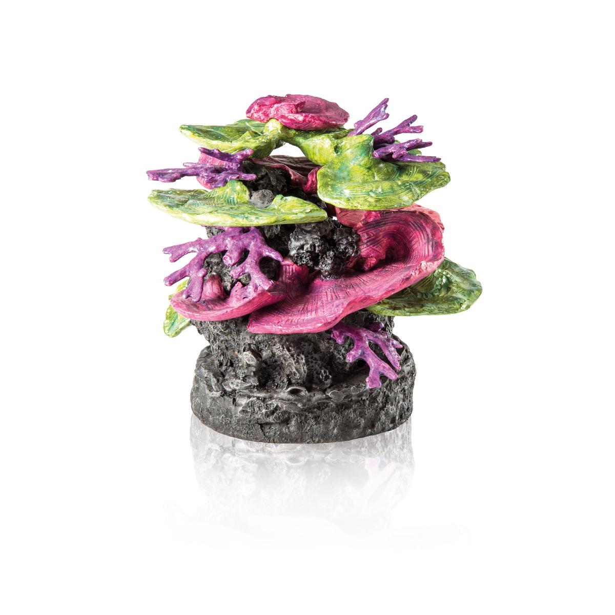 FOT_PRD_FREI_FR_48361-biOrb-Korallen-Fels-Ornament-Gruen-Lila-001_-SALL_-AINJPG_-V3
