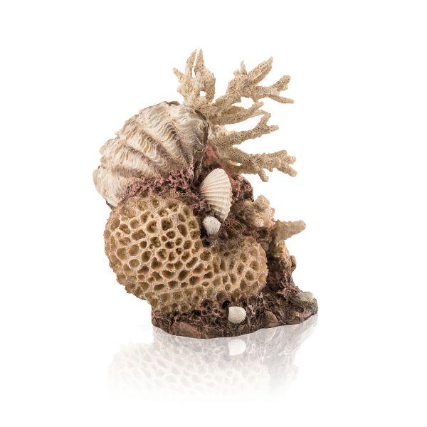 Oase biOrb Korallen-Muschel Ornament natural