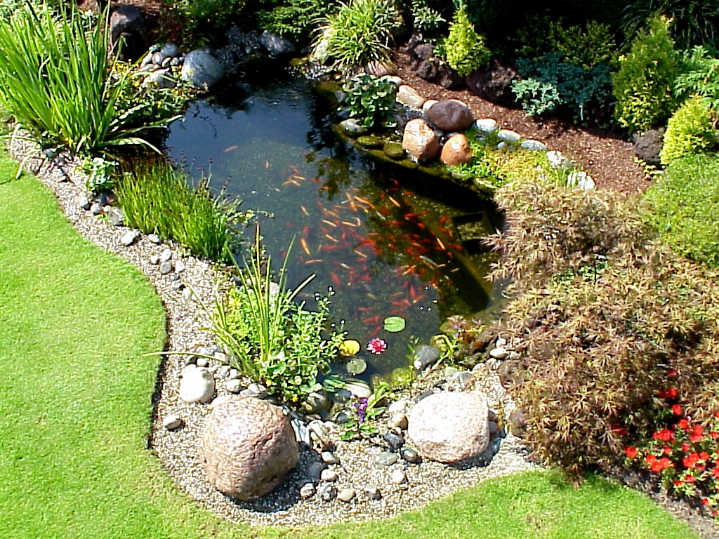 Oase blog aktuelles oase for Garten teiche