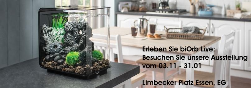 biorb-lpe_02