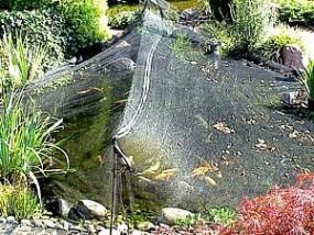 Laubschutznetz 6m Breite