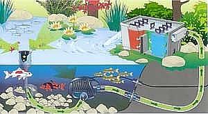 Oase AquaSkim 40 - Beispielinstallation