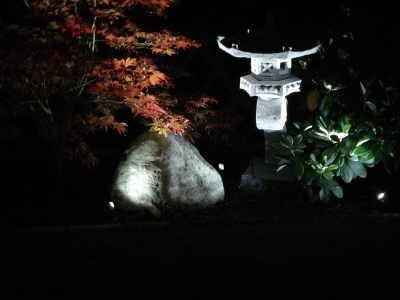 Oase Lunaqua Mini LED - Ausleuchtung bei Dunkelheit
